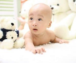 Babygehirne als Vorbild für bessere Computer